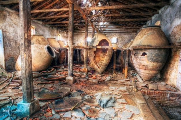 Cellar. Abandoned building
